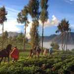 Local people on Bromo (photo by : R. Sam)